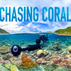 ChasingCOralbanner600_edited-1